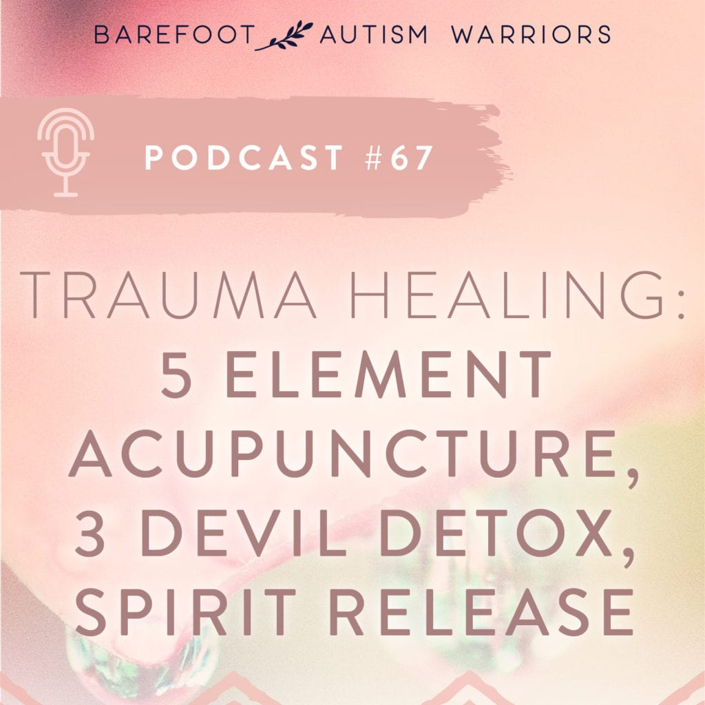 5 ELEMENTS ACUPUNCTURE AND SPIRIT RELEASE FOR PTSD & TRAUMA
