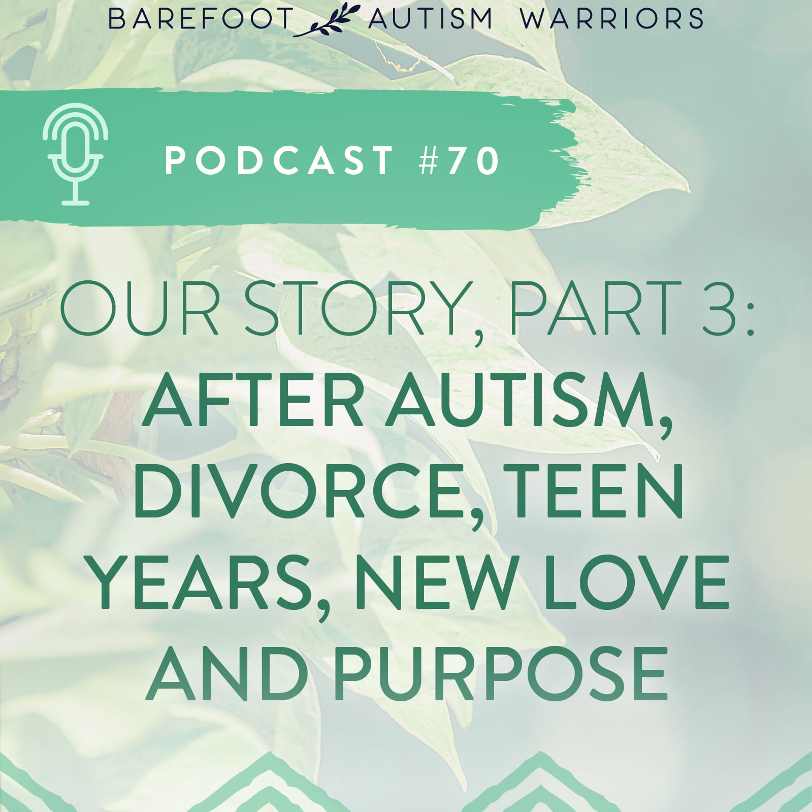 Podcast series: Our Autism Turnaround Story, part 3.