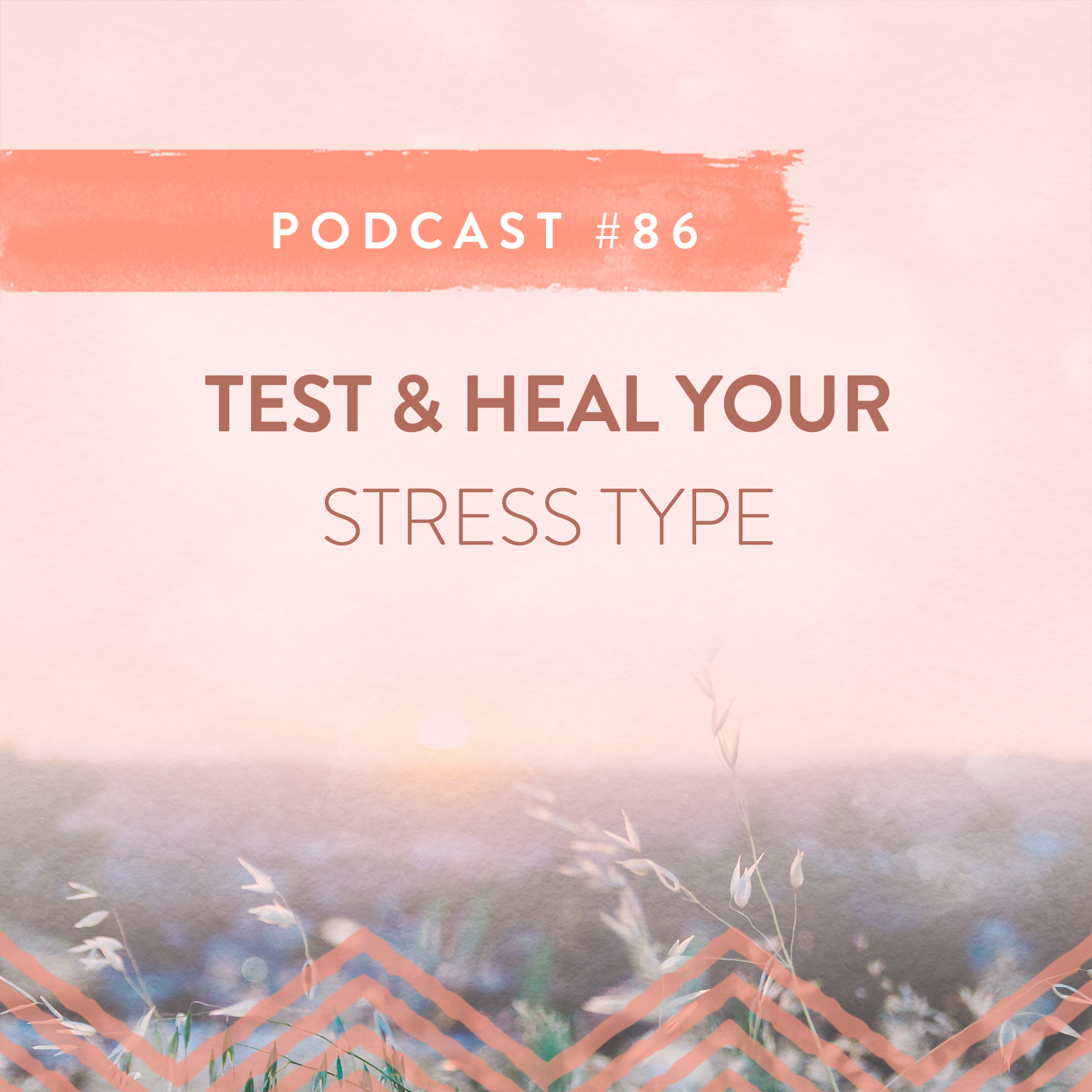 TEST AND HEAL YOUR STRESS TYPE